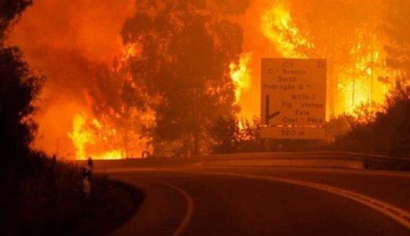 Portekiz'in ormanları yanıyor: 39 ölü