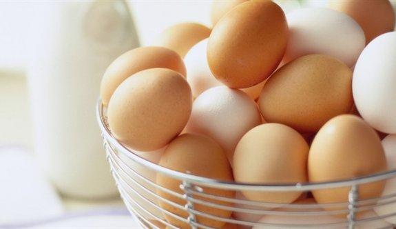 Türkiye'den dev yumurta ihracatı, tam 180 milyon