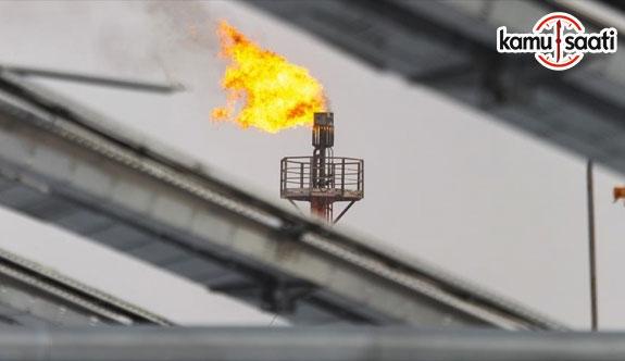 TürkAkım'dan ilk gaz 2019'da gelecek