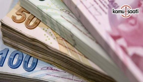 Türk Parası Kıymetini Koruma Hakkında Tebliğ - 30 Ocak 2018