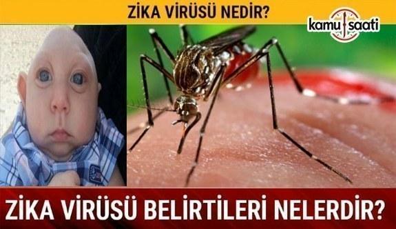 Zika Virüsü Nedir? Belirtileri Nelerdir?