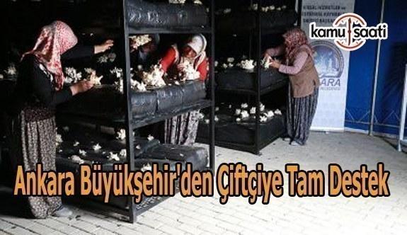 Ankara Büyükşehir'den çiftçiye tam destek