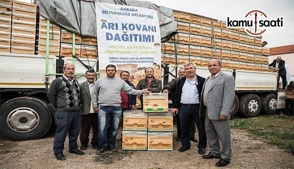 Büyükşehir'den Arı Yetiştiriciliği Sertifikası bulunan vatandaşlara destek