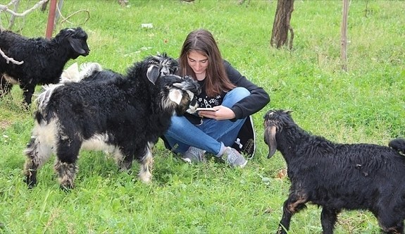 Erdoğan'dan koyun otlatırken kitap okuyan Kader'e davet