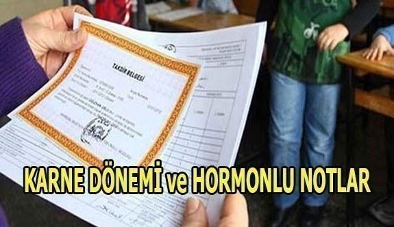 KARNE DÖNEMİ ve HORMONLU NOTLAR