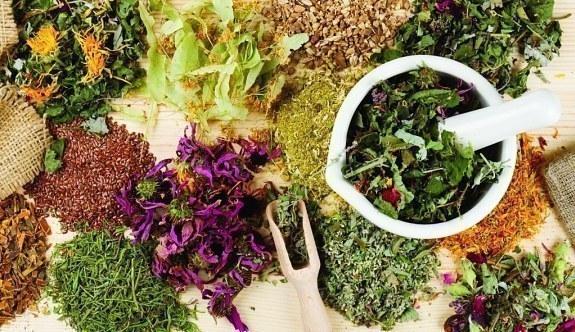 Sağlık Bakanlığı'ndan önemli adım! Bitkisel ilaçlar...