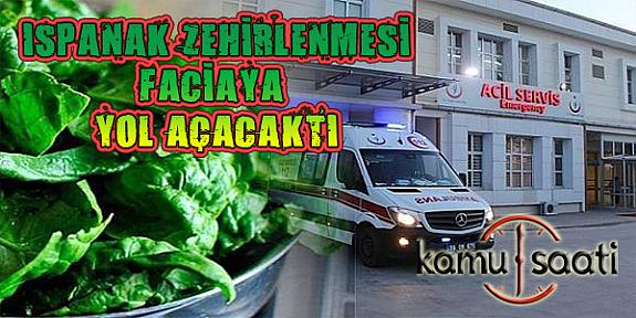 Ispanak Neden Zehirledi? |İstanbul'da Ispanak Alarmı