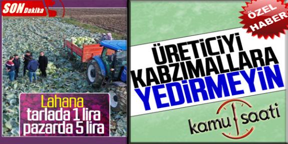 Lahana Tüketiciye 4 Katına Satılıyor Çiftçiler İsyanda | Aracılar Kazanmaya Devam Ediyor