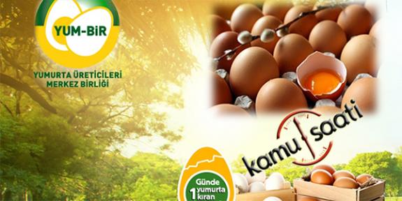 Yumurta Fiyatlarında şok Yılbaşı Kararı!