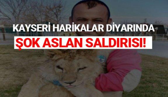 Kayseri Harikalar Diyarında Şok Olay Aslan Saldırısı!
