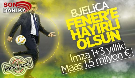 Bjelica adım adım Fenerbahçe'ye doğru