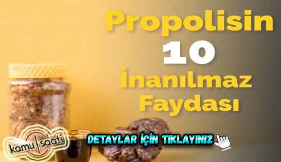 Propolis nedir? Propolisin hiç bilinmeyen faydasına şaşıracaksınız! İşte Detaylar