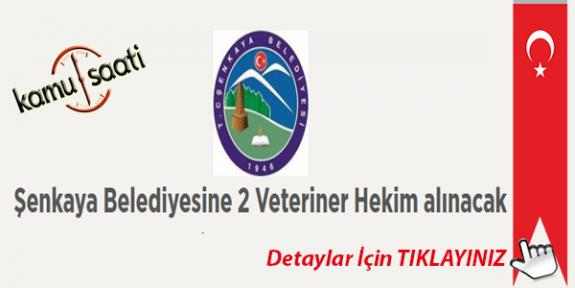şenkaya belediyesi 2 veteriner hakim personel alımı yapacak