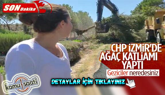 İzmir'de CHP'li belediyenin ağaç katliamı genç kızı gözyaşlarına boğdu