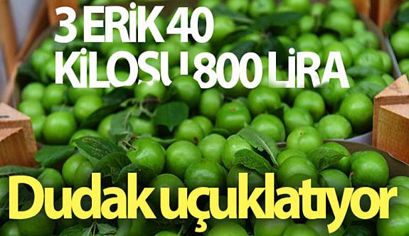 Yeşil Erik Altın Çağını Yaşıyor! Eskişehir'de 3 adet erik 40 lira