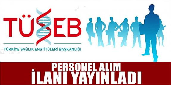 Türkiye Sağlık Enstitüleri Başkanlığı 6  Personel alımı iş ilanları iş başvurusu ve başvuru formu
