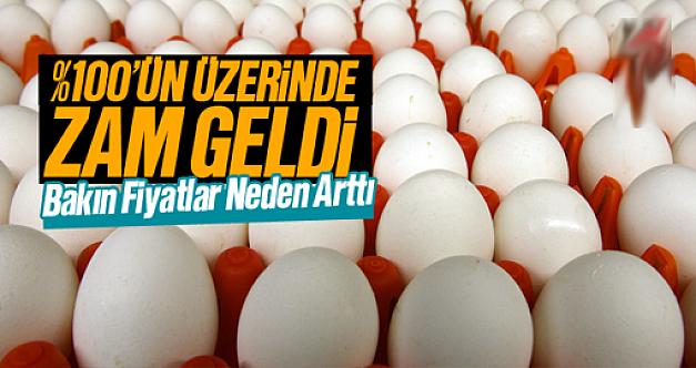 Yumurta fiyatları neden yükseliyor?