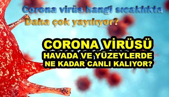 Corona virüs hangi Havaları daha çok Seviyor?