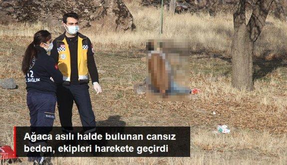 Ağaca asılı halde bulunan cansız beden, ekipleri harekete geçirdi