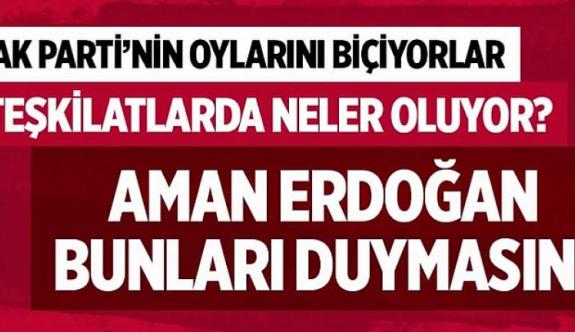 Cumhurbaşkanı Erdoğan duymasın! AK Parti teşkilatlarında neler oluyor?