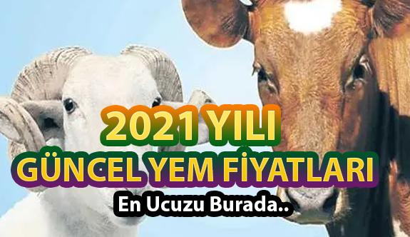 Küçükbaş ve Büyükbaş Hayvan Yemi Fiyatları 2021 (GÜNCEL)