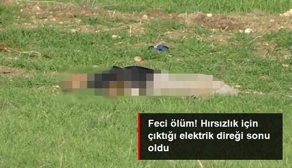 Hırsızlık için çıktığı elektrik direğinde akıma kapılarak öldü