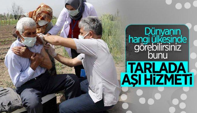 Erzincanlı çiftçi aile çapa yaptıkları tarlada aşılandı