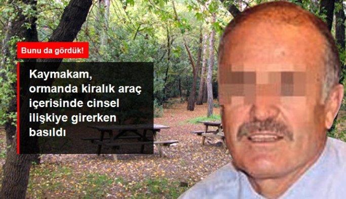 Kaymakam, ormanda kiralık araç içerisinde cinsel ilişkiye girerken basıldı