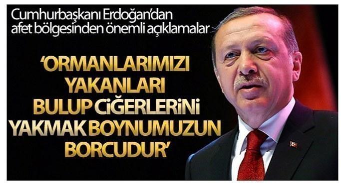 Cumhurbaşkanı Erdoğan: Yangın bölgesinden önemli açıklamalar