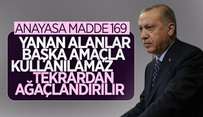 Cumhurbaşkanı Erdoğan: Yanan alanlar başka amaçla kullanılamaz