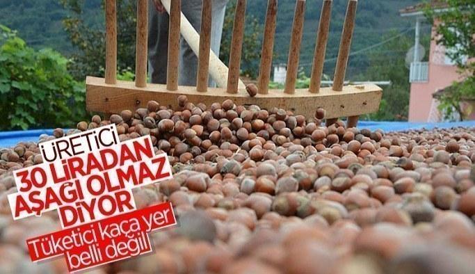 Fındıkta üreticinin taban fiyat beklentisi en az 30 lira