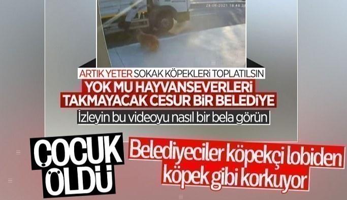 İstanbul'da köpekten kaçarken kamyon çarpan genç hayatını kaybetti