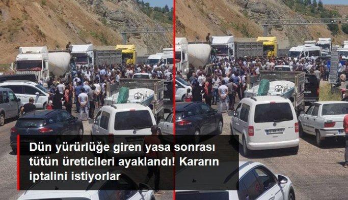 Tütün üreticilerinden yetki belgesi protestosu! Adıyaman-Malatya yolunu trafiğe kapattılar