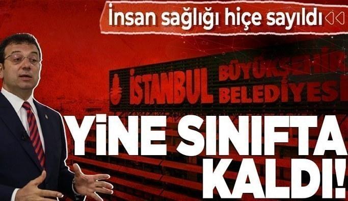 CHP'li İBB sivrisineklerle mücadelede de sınıfta kaldı! İstanbul Üniversitesi profesöründen büyük tepki