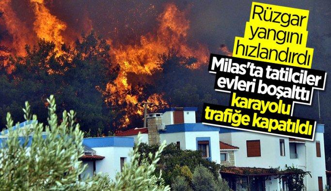 Muğla'da yangın kontrolden çıktı yazlık villalara sıçradı