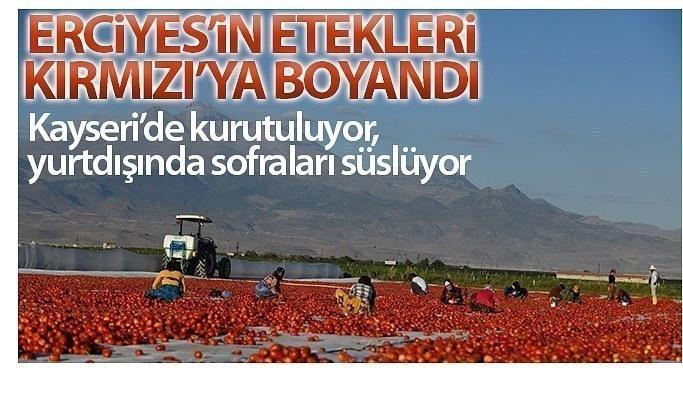 Erciyes'in etekleri kırmızıya boyandı