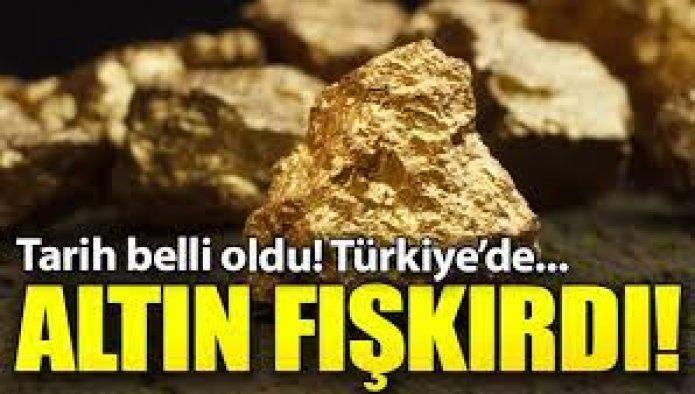 O Bölgeden Altın fışkırdı, tarih belli oldu!