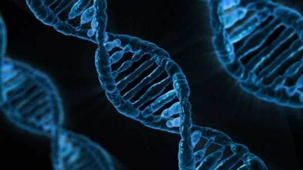 DNA'yı en çok tahrip eden etken sigara
