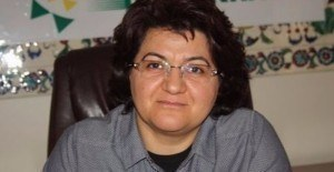 DBP'li Eş Genel Başkanı Emine Ayna'ya gözaltı