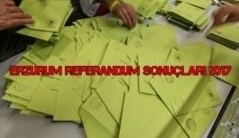 Erzurum referandum sonuçları 2017 - Evet, hayır oy oranları
