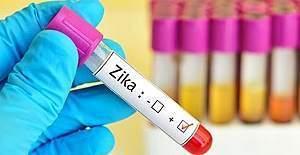 DSÖ, Zika Virüsünü 'küresel acil durum' kapsamından çıkardı