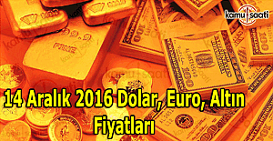 14 Aralık Dolar, Euro kaç TL oldu? Kapalı Çarşı altın fiyatları