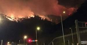 Trabzon Sürmene'de çıkan yangın kontrol altına alındı