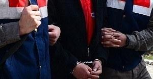 Muş'ta terör operasyonu, 12 gözaltı
