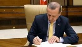Cumhurbaşkanı Erdoğan'dan yeniden yapılandırma kanununa onay
