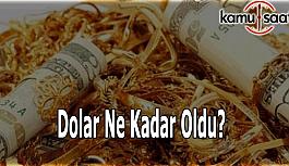 Dolar ve altın düşüşte - 31 Mayıs Dolar kaç TL?