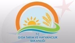 Gıda Tarım ve Hayvancılık Bakanlığı tayin tercihleri başladı