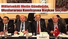 Metin Gündoğdu, Uluslararası Komisyona Başkan Seçildi