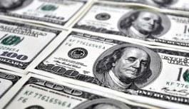 Merkez Bankası dolar ve enflasyon tahminini...