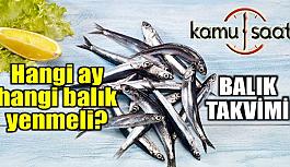 Kış Aylarında Hangi Balık Yenir? Balık Yemenin Faydaları ve Aylara Göre Hangi Balık Yemeliyiz